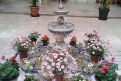 Patio día la Virgen